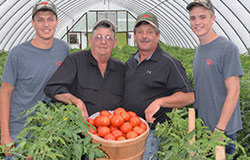 Grainger County, Tennessee's Stratton Farms consists of third, fourth and fifth-generation farmers working together to bring the highest quality produce to your local Food City grocery store.