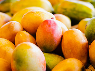 Find fresh mangoes at your local Food City produce department all summer long.